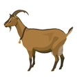 Brown goat side view isolated vector image vector image
