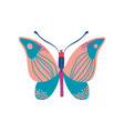 butterfly insect with colorful wings vector image vector image