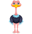 Ostrich cartoon vector image vector image