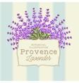 wreath lavender flowers vector image