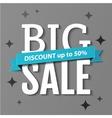 Big Sale inscription Big Sale banner vector image vector image
