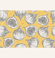 figs seamless pattern hand draw sketch vector image vector image
