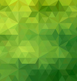 Green geometric vector image vector image