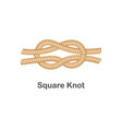 type nautical or marine node square knot for vector image vector image