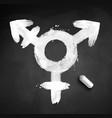 chalked of transgender symbol vector image