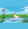 duck in the pond with cartoon style vector image vector image