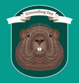 groundhog day concept national holiday in the usa vector image