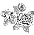 rose flowers with leaves vector image vector image