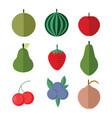 simple flat fruits set vector image