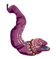 spotted moray eel with a collar with spikes vector image vector image
