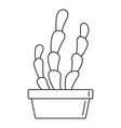 suculent cactus pot icon outline style vector image