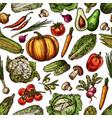 vegetables natural fresh sketch backdrop vector image