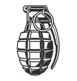 vintage military hand grenade concept vector image