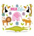 wildlife cute animals vector image