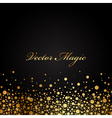 black and gold luxury background vector image vector image