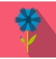 Blue cornflower icon flat style vector image