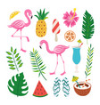 tropical summer design set - pink flamingo exotic vector image