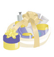 cosmetics gift set in a basket vector image