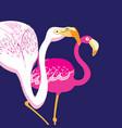 graphics beautiful portraits of pink flamingos vector image vector image