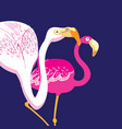 graphics beautiful portraits pink flamingos vector image vector image