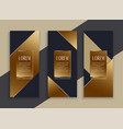 premium set of dark geometric banners vector image vector image