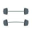 barbell with for lifestyle vector image