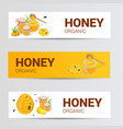 horizontal banners set with sweet honey vector image vector image