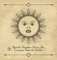sun retro emblem vector image