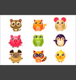 adorable baby animals in girly design vector image