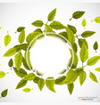 beautiful green circle of leaves vector image