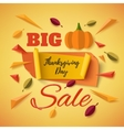 Big Thanksgiving Day sale banner with abstract vector image vector image
