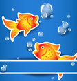 Cartoon goldfishs with bubbles over blue card vector image vector image