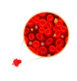 erythrocytes with white blood cells and vector image
