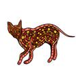 ethnic ceylon cat vector image vector image