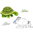 fast and slow vector image vector image