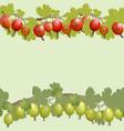 gooseberry horizontal seamless pattern vector image vector image