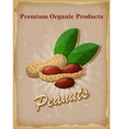 Peanuts vintage poster vector image vector image
