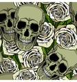 Seamless pattern with skulls and white roses vector image vector image
