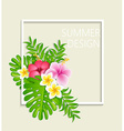 Summer frame with tropical flowers vector image