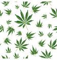cannabis background marijuana hemp texture green vector image