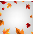 autumn poster with leaf vector image vector image