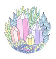 crystals and plants vector image vector image