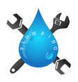 drop and spanner of plumbing vector image vector image