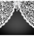 lace curtains and bow vector image