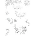 line drawing orchid flower wreaths frames vector image vector image