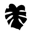 monstera leaf silhouette vector image vector image
