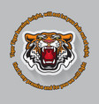 tiger poster template with angry tiger head vector image