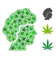 woman profile mosaic of hemp leaves vector image