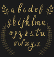 Hand drawn alphabet and design elements vector image