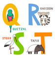 animal alphabet q r s and t vector image vector image